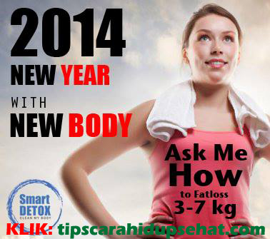 2014 body baru